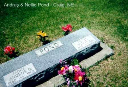 FREEMAN POND, NELLIE - Burt County, Nebraska | NELLIE FREEMAN POND - Nebraska Gravestone Photos