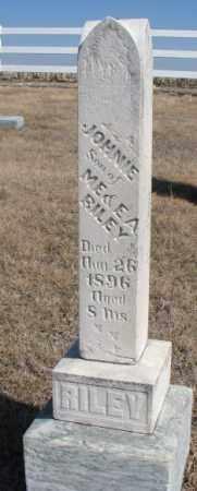 RILEY, JOHNNIE - Burt County, Nebraska | JOHNNIE RILEY - Nebraska Gravestone Photos