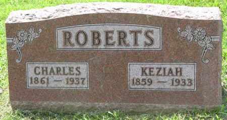 ROBERTS, CHARLES - Burt County, Nebraska | CHARLES ROBERTS - Nebraska Gravestone Photos