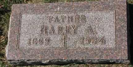 SEARS, HARRY A. - Burt County, Nebraska | HARRY A. SEARS - Nebraska Gravestone Photos