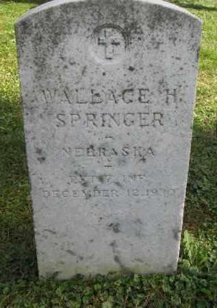 SPRINGER, WALLACE H. - Burt County, Nebraska | WALLACE H. SPRINGER - Nebraska Gravestone Photos