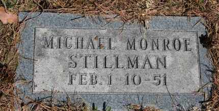 STILLMAN, MICHAEL MONROE - Burt County, Nebraska   MICHAEL MONROE STILLMAN - Nebraska Gravestone Photos