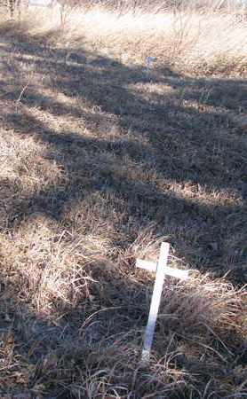 UNKNOWN, CROSSES - Burt County, Nebraska | CROSSES UNKNOWN - Nebraska Gravestone Photos