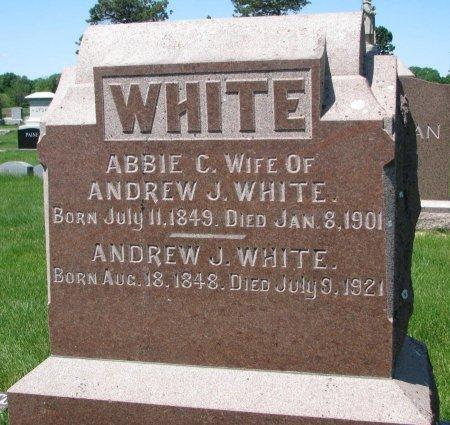 WHITE, ANDREW J. - Burt County, Nebraska   ANDREW J. WHITE - Nebraska Gravestone Photos