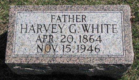 WHITE, HARVEY G. - Burt County, Nebraska | HARVEY G. WHITE - Nebraska Gravestone Photos