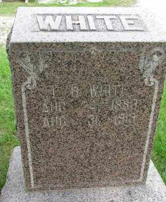 WHITE, L.B. - Burt County, Nebraska | L.B. WHITE - Nebraska Gravestone Photos