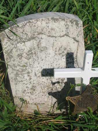 WHITE, LEWIS J. - Burt County, Nebraska | LEWIS J. WHITE - Nebraska Gravestone Photos