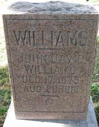 WILLIAMS, JOHN DAVID - Burt County, Nebraska | JOHN DAVID WILLIAMS - Nebraska Gravestone Photos