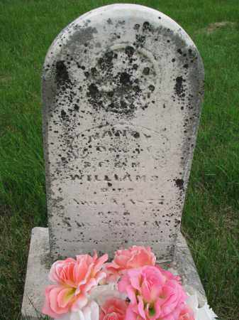 WILLIAMS, NANCY - Burt County, Nebraska   NANCY WILLIAMS - Nebraska Gravestone Photos