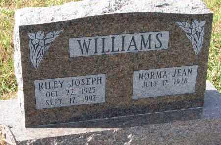 WILLIAMS, RILEY JOSEPH - Burt County, Nebraska | RILEY JOSEPH WILLIAMS - Nebraska Gravestone Photos