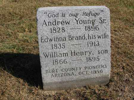 YOUNG, WILLIAM HENRY - Burt County, Nebraska | WILLIAM HENRY YOUNG - Nebraska Gravestone Photos