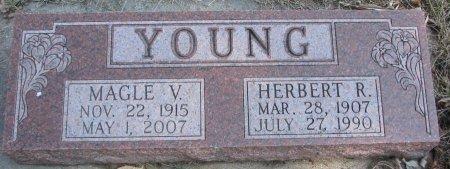 YOUNG, HERBERT R. - Burt County, Nebraska | HERBERT R. YOUNG - Nebraska Gravestone Photos