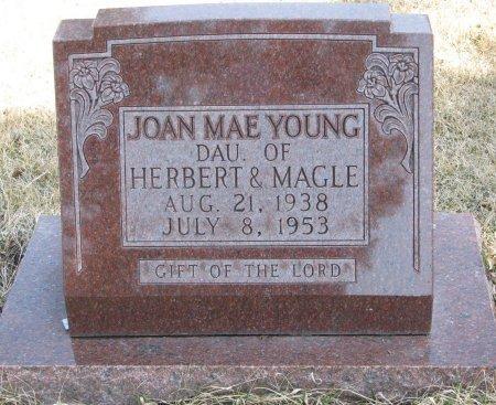 YOUNG, JOAN MAE - Burt County, Nebraska | JOAN MAE YOUNG - Nebraska Gravestone Photos