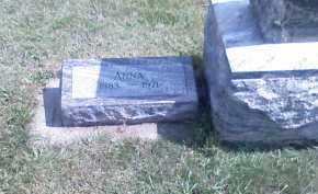 HEIN, ANNA - Butler County, Nebraska | ANNA HEIN - Nebraska Gravestone Photos