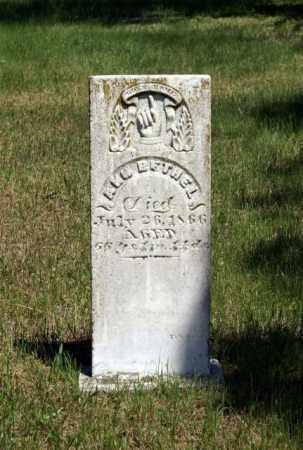 BETHEL, ANN - Cass County, Nebraska | ANN BETHEL - Nebraska Gravestone Photos