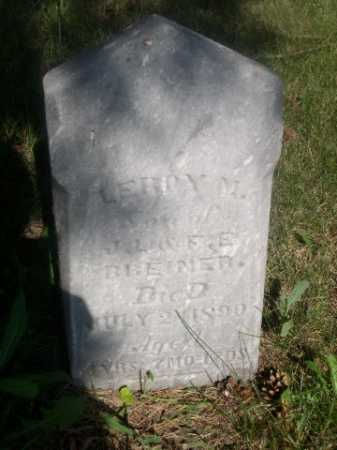 BREINER, LEROY M. - Cass County, Nebraska | LEROY M. BREINER - Nebraska Gravestone Photos