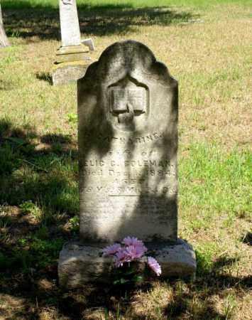 COLEMAN, CATHERINE - Cass County, Nebraska   CATHERINE COLEMAN - Nebraska Gravestone Photos