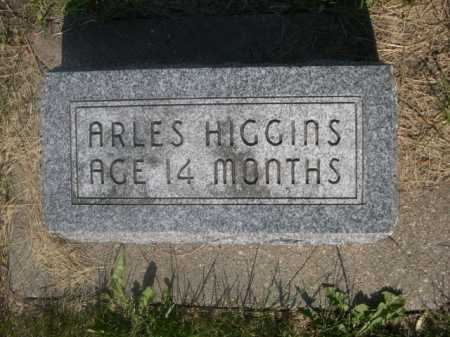 HIGGINS, ARLES - Cass County, Nebraska | ARLES HIGGINS - Nebraska Gravestone Photos