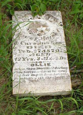 LONG, MARY - Cass County, Nebraska | MARY LONG - Nebraska Gravestone Photos