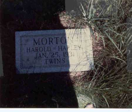 MORTON, HAROLD - Cass County, Nebraska | HAROLD MORTON - Nebraska Gravestone Photos