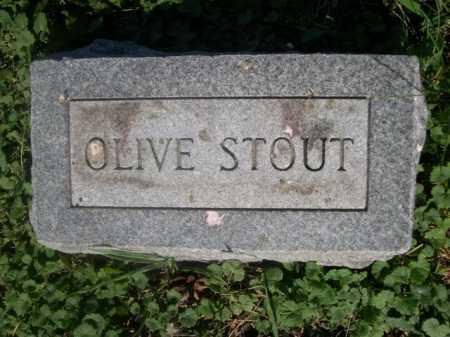 STOUT, OLIVE - Cass County, Nebraska | OLIVE STOUT - Nebraska Gravestone Photos