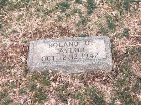 TAYLOR, ROLAND G. - Cass County, Nebraska | ROLAND G. TAYLOR - Nebraska Gravestone Photos