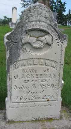 ACKERMAN, BARBARA - Cedar County, Nebraska | BARBARA ACKERMAN - Nebraska Gravestone Photos