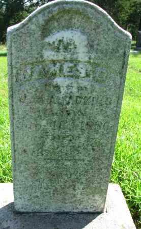 ADAINS, JAMES O. - Cedar County, Nebraska | JAMES O. ADAINS - Nebraska Gravestone Photos