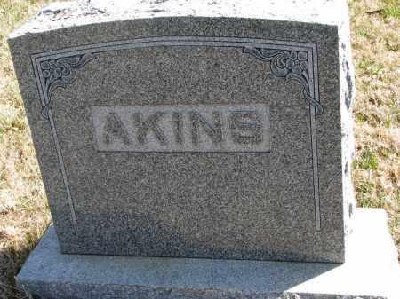 AKINS, FAMILY STONE - Cedar County, Nebraska | FAMILY STONE AKINS - Nebraska Gravestone Photos