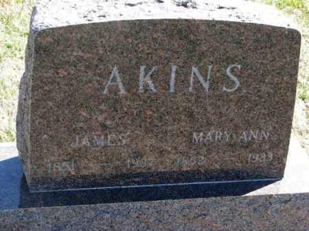 AKINS, MARY ANN - Cedar County, Nebraska | MARY ANN AKINS - Nebraska Gravestone Photos