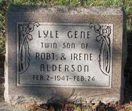 ALDERSON, LYLE GENE - Cedar County, Nebraska | LYLE GENE ALDERSON - Nebraska Gravestone Photos