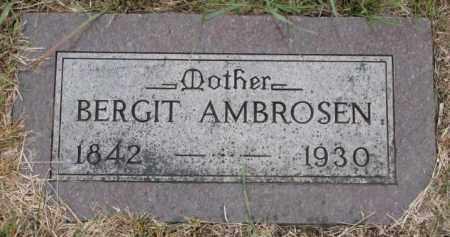 AMBROSEN, BERGIT - Cedar County, Nebraska | BERGIT AMBROSEN - Nebraska Gravestone Photos