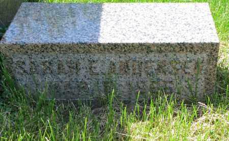 ANDERSEN, SARAH E. - Cedar County, Nebraska | SARAH E. ANDERSEN - Nebraska Gravestone Photos