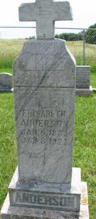 ANDERSON, ELISABETH - Cedar County, Nebraska | ELISABETH ANDERSON - Nebraska Gravestone Photos