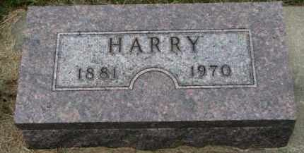 ANDERSON, HARRY - Cedar County, Nebraska | HARRY ANDERSON - Nebraska Gravestone Photos