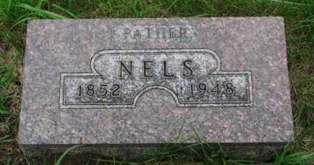 ANDERSON, NELS - Cedar County, Nebraska   NELS ANDERSON - Nebraska Gravestone Photos