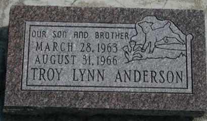 ANDERSON, TROY LYNN - Cedar County, Nebraska | TROY LYNN ANDERSON - Nebraska Gravestone Photos