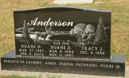 ANDERSON, DUANE D - Cedar County, Nebraska | DUANE D ANDERSON - Nebraska Gravestone Photos
