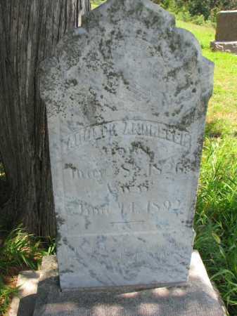 ANDRESEN, ADOLPH - Cedar County, Nebraska   ADOLPH ANDRESEN - Nebraska Gravestone Photos
