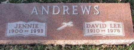 ANDREWS, DAVID LEE - Cedar County, Nebraska | DAVID LEE ANDREWS - Nebraska Gravestone Photos