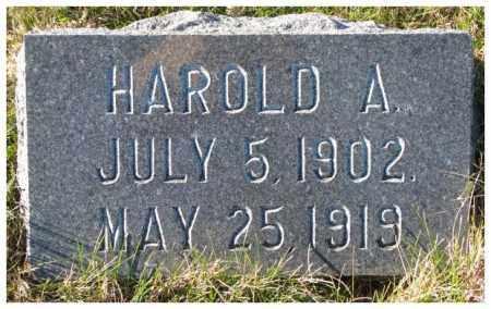 ANTRIM, HAROLD A. - Cedar County, Nebraska | HAROLD A. ANTRIM - Nebraska Gravestone Photos