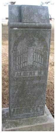 ARDUSER, ALBERT M. - Cedar County, Nebraska | ALBERT M. ARDUSER - Nebraska Gravestone Photos