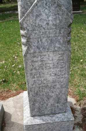 ARENS, CELIE - Cedar County, Nebraska | CELIE ARENS - Nebraska Gravestone Photos