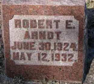 ARNDT, ROBERT E. - Cedar County, Nebraska | ROBERT E. ARNDT - Nebraska Gravestone Photos