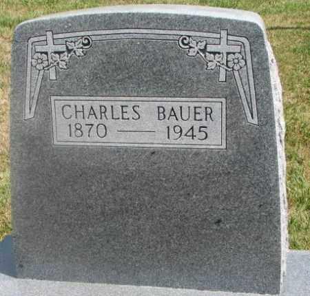 BAUER, CHARLES - Cedar County, Nebraska | CHARLES BAUER - Nebraska Gravestone Photos