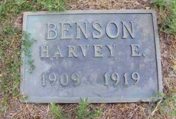 BENSON, HARVEY E. - Cedar County, Nebraska | HARVEY E. BENSON - Nebraska Gravestone Photos