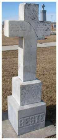BESTE, JOHN - Cedar County, Nebraska | JOHN BESTE - Nebraska Gravestone Photos