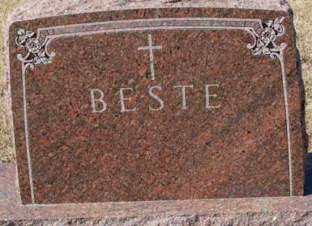 BESTE, PLOT - Cedar County, Nebraska | PLOT BESTE - Nebraska Gravestone Photos