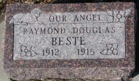 BESTE, RAYMOND DOUGLAS - Cedar County, Nebraska | RAYMOND DOUGLAS BESTE - Nebraska Gravestone Photos