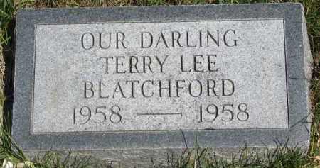 BLATCHFORD, TERRY LEE - Cedar County, Nebraska   TERRY LEE BLATCHFORD - Nebraska Gravestone Photos